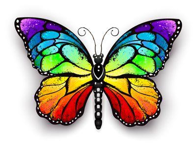 AdobeStock_147450102_Butterfly
